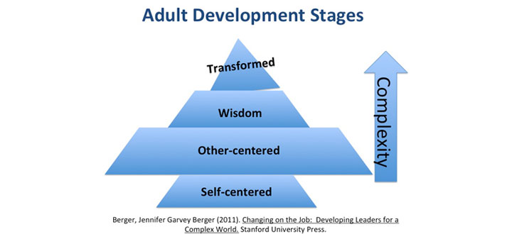 the stages of development in adult Older adulthood and aging (development throughout the all of erickson's stages development in older adulthood (development throughout the life cycle.